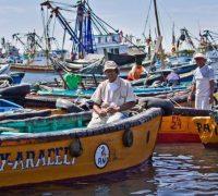 La pesca artesanal peruana genera 150 mil puestos de trabajo en la actualidad